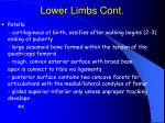 lower limbs cont79
