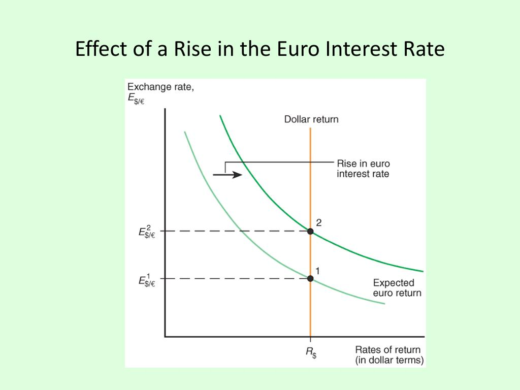 Effect of a Rise in the Euro Interest Rate