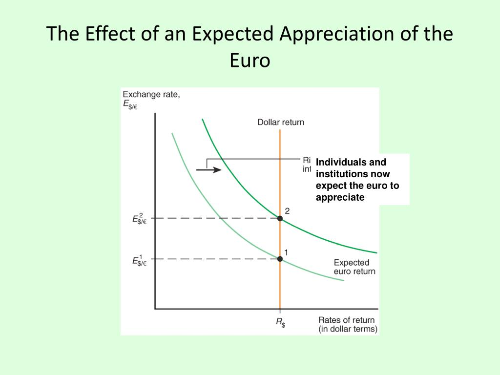 The Effect of an Expected Appreciation of the Euro