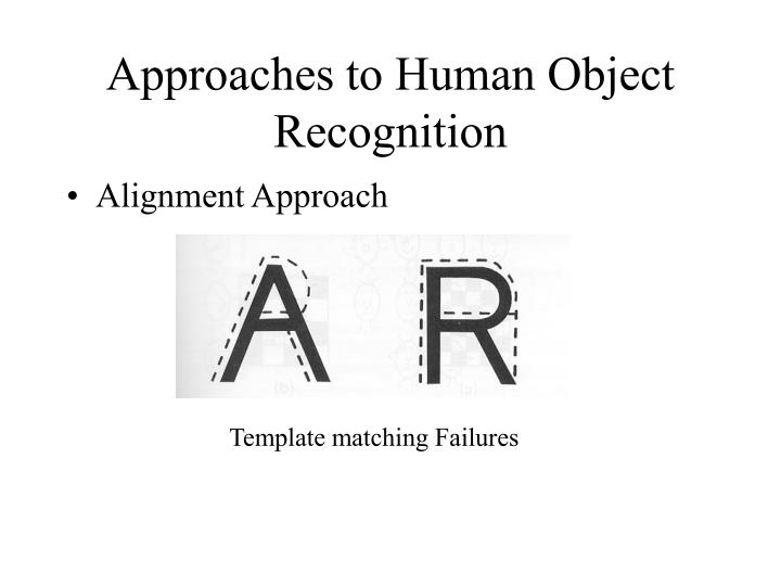 Approaches to Human Object Recognition