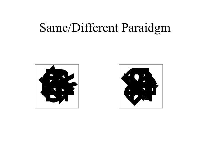 Same/Different Paraidgm