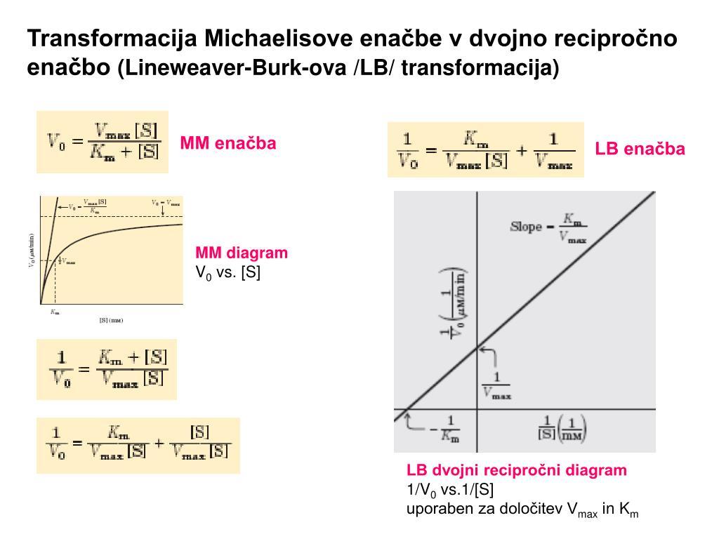 Transformacija Michaelisove enačbe v dvojno recipročno enačbo