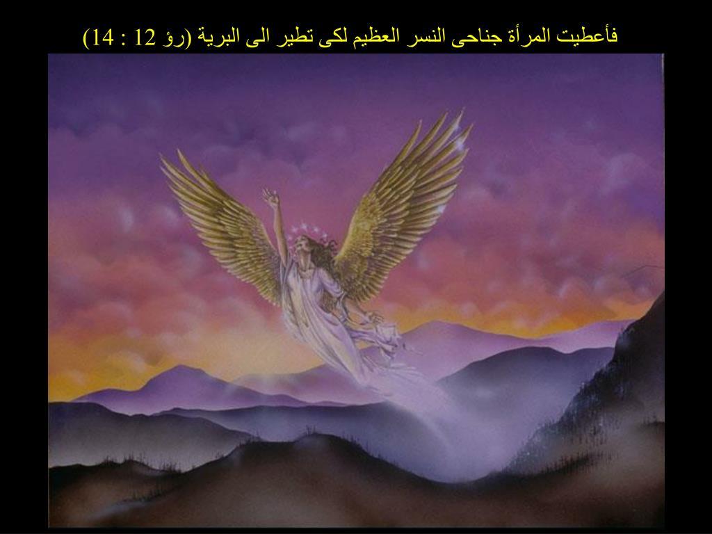 فأعطيت المرأة جناحى النسر العظيم لكى تطير الى البرية (رؤ 12 : 14)