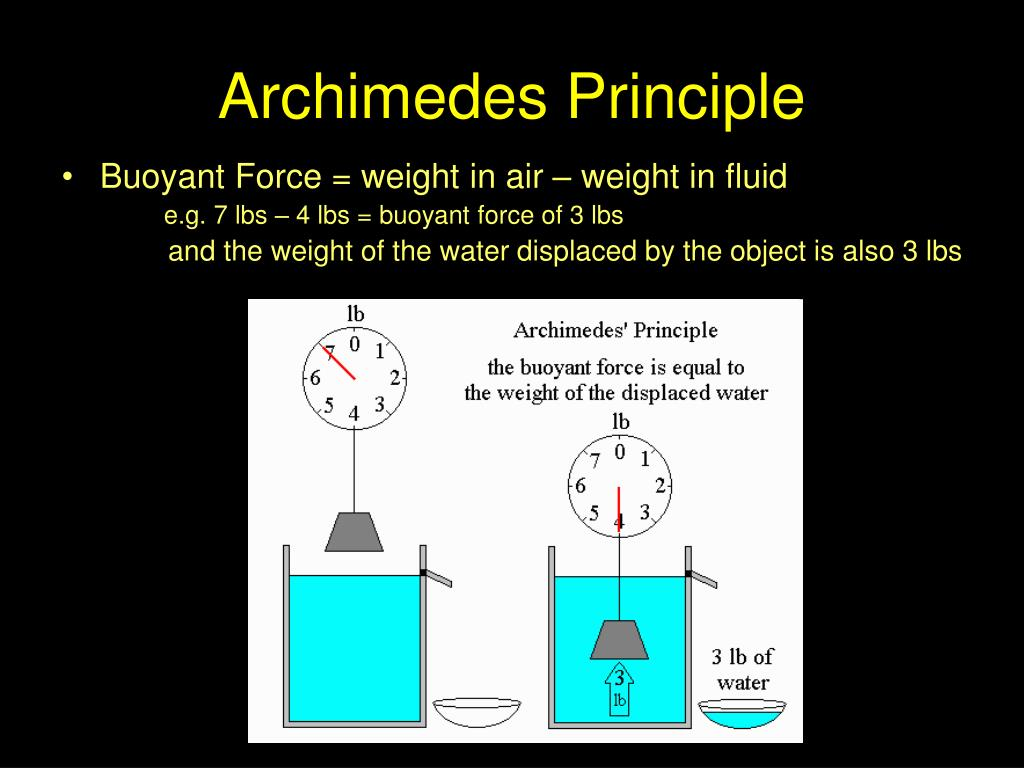 physics archimedes principle lab report Background reading science historians generally agree that the idea for his principle occurred to archimedes as he entered a bath pool as he waded into deeper water.