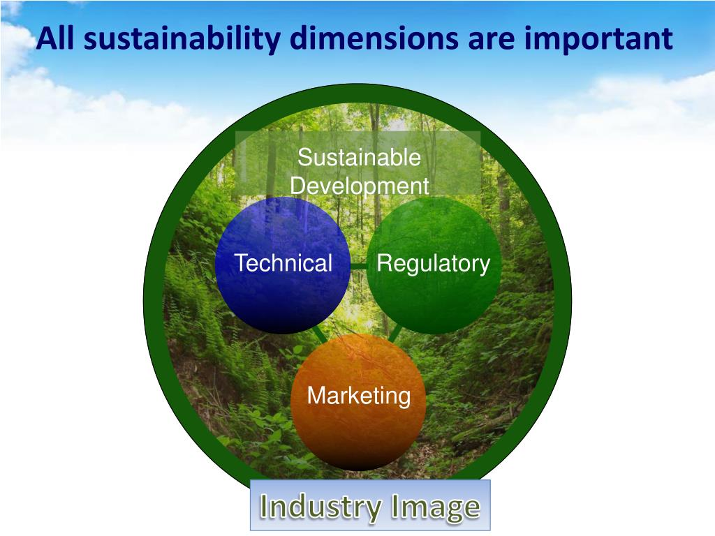All sustainability dimensions are important