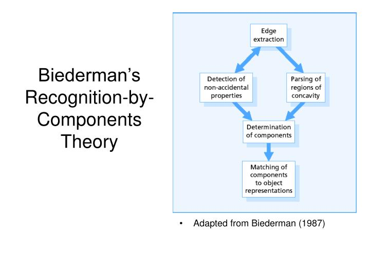 Biederman's Recognition-by-Components Theory