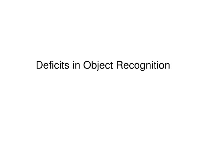 Deficits in Object Recognition