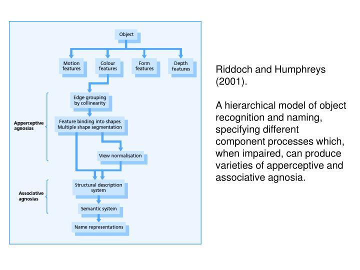 Riddoch and Humphreys (2001).