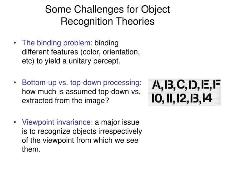 Some Challenges for Object Recognition Theories