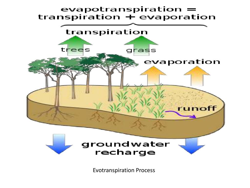 Evotranspiration Process