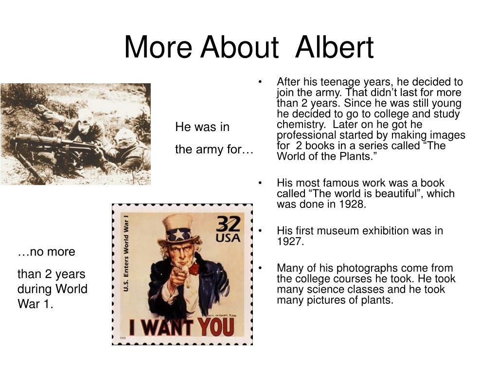 More About  Albert