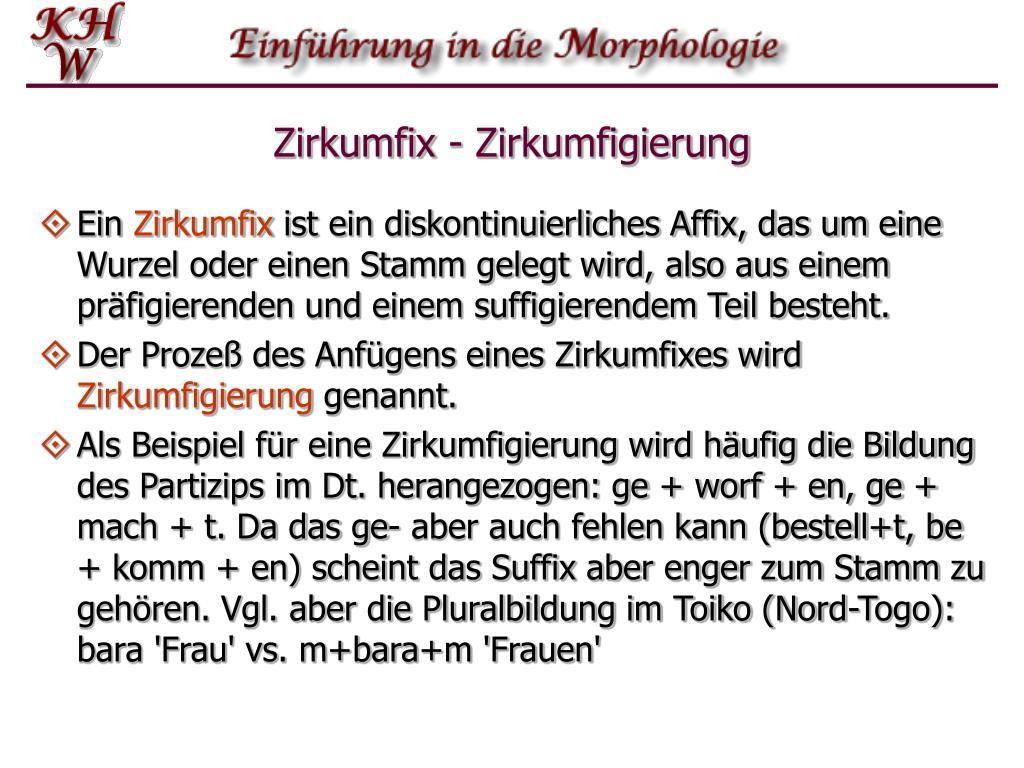 Zirkumfix - Zirkumfigierung