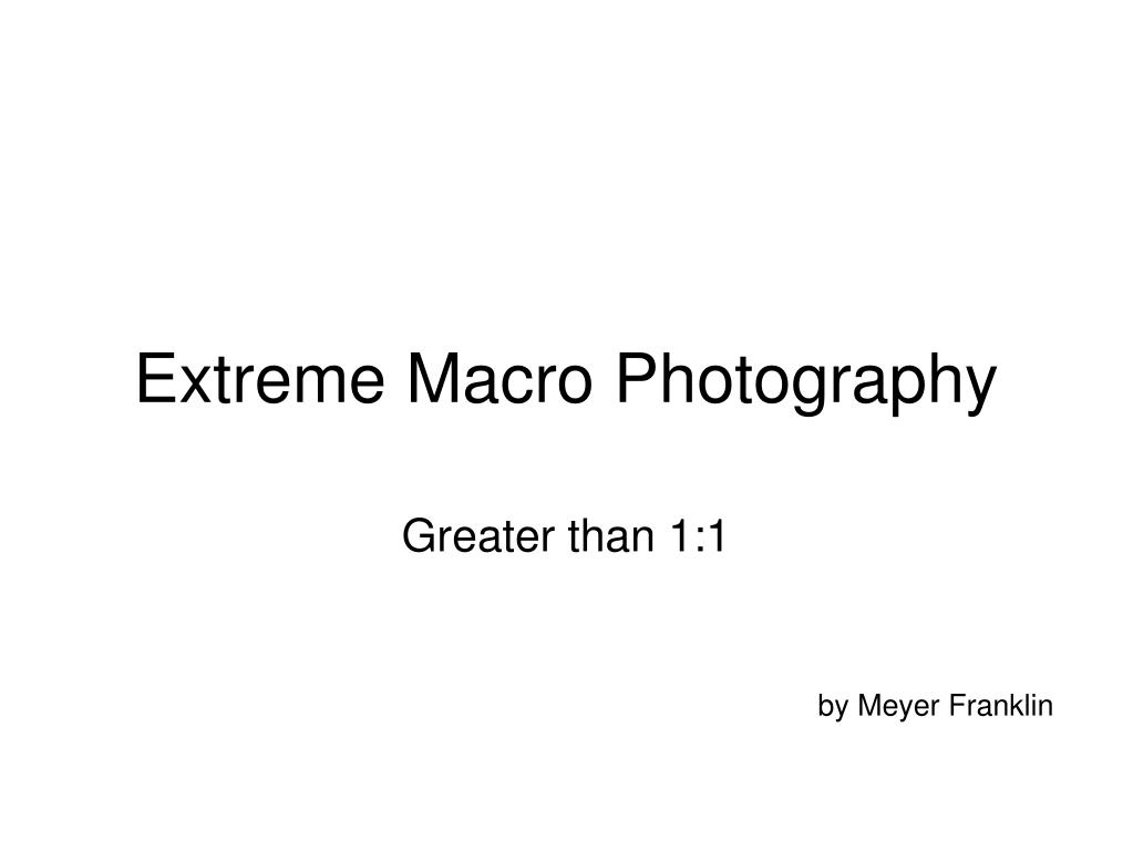 Extreme Macro Photography