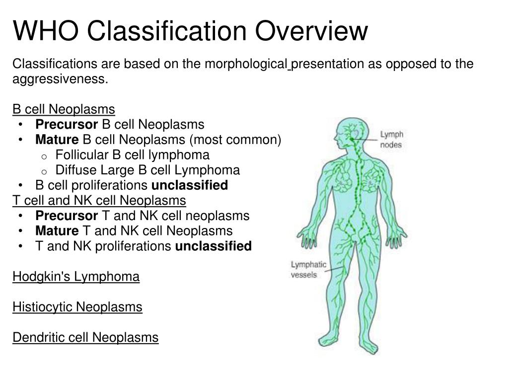 WHO Classification Overview