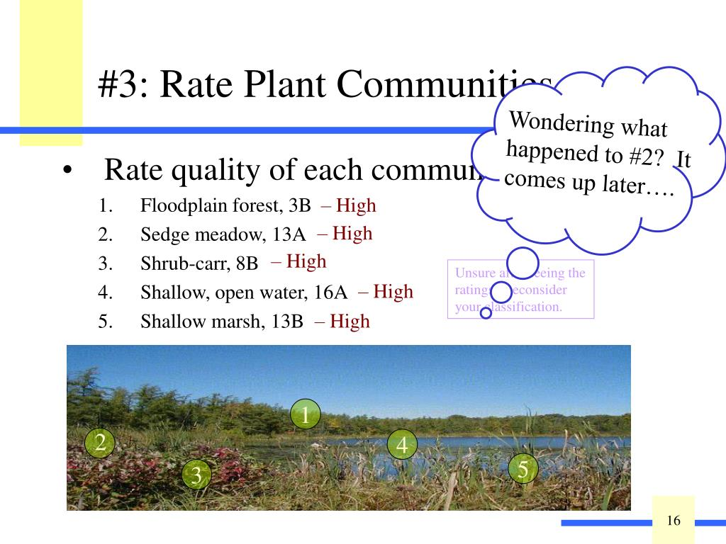 Key out plant communities: