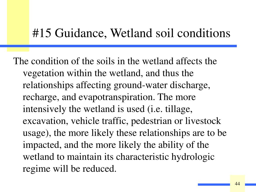 The condition of the soils in the wetland affects the vegetation within the wetland, and thus the relationships affecting ground-water discharge, recharge, and evapotranspiration. The more intensively the wetland is used (i.e. tillage, excavation, vehicle traffic, pedestrian or livestock usage), the more likely these relationships are to be impacted, and the more likely the ability of the wetland to maintain its characteristic hydrologic regime will be reduced.