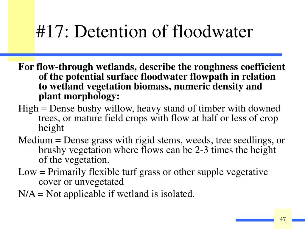 For flow-through wetlands, describe the roughness coefficient of the potential surface floodwater flowpath in relation to wetland vegetation biomass, numeric density and plant morphology: