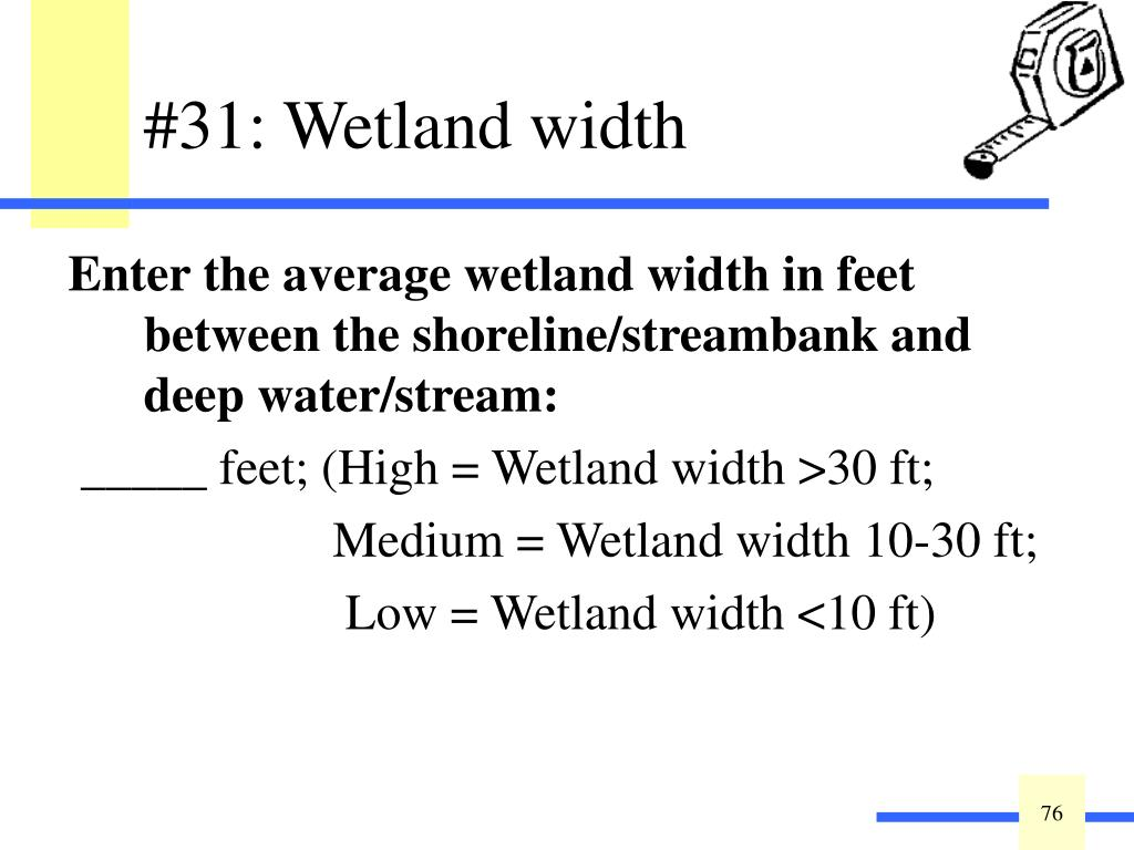 Enter the average wetland width in feet between the shoreline/streambank and deep water/stream:
