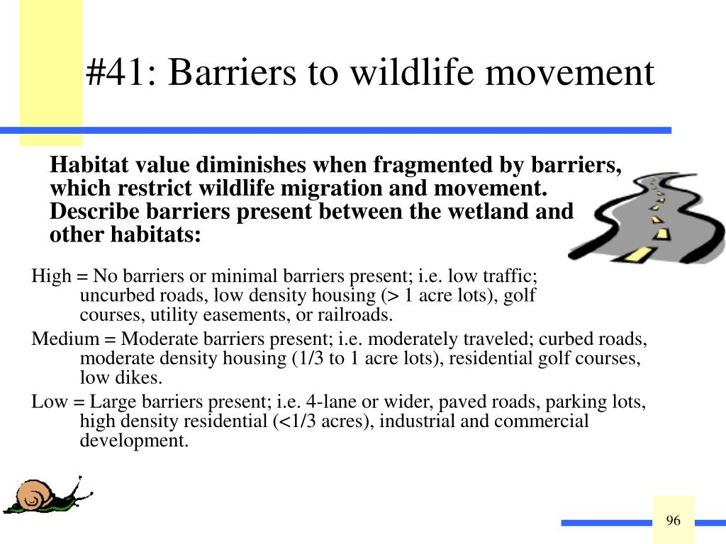 #41: Barriers to wildlife movement