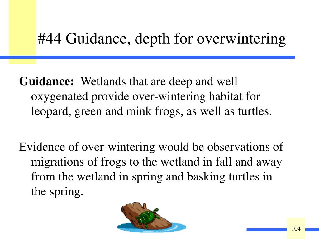 #44 Guidance, depth for overwintering