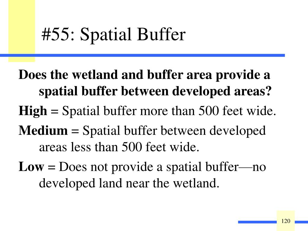 Does the wetland and buffer area provide a spatial buffer between developed areas?