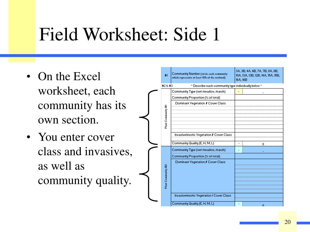 Field Worksheet: Side 1