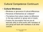 cultural competence continuum21