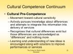 cultural competence continuum22