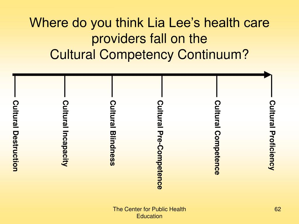 Where do you think Lia Lee's health care providers fall on the
