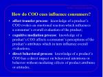 how do coo cues influence consumers