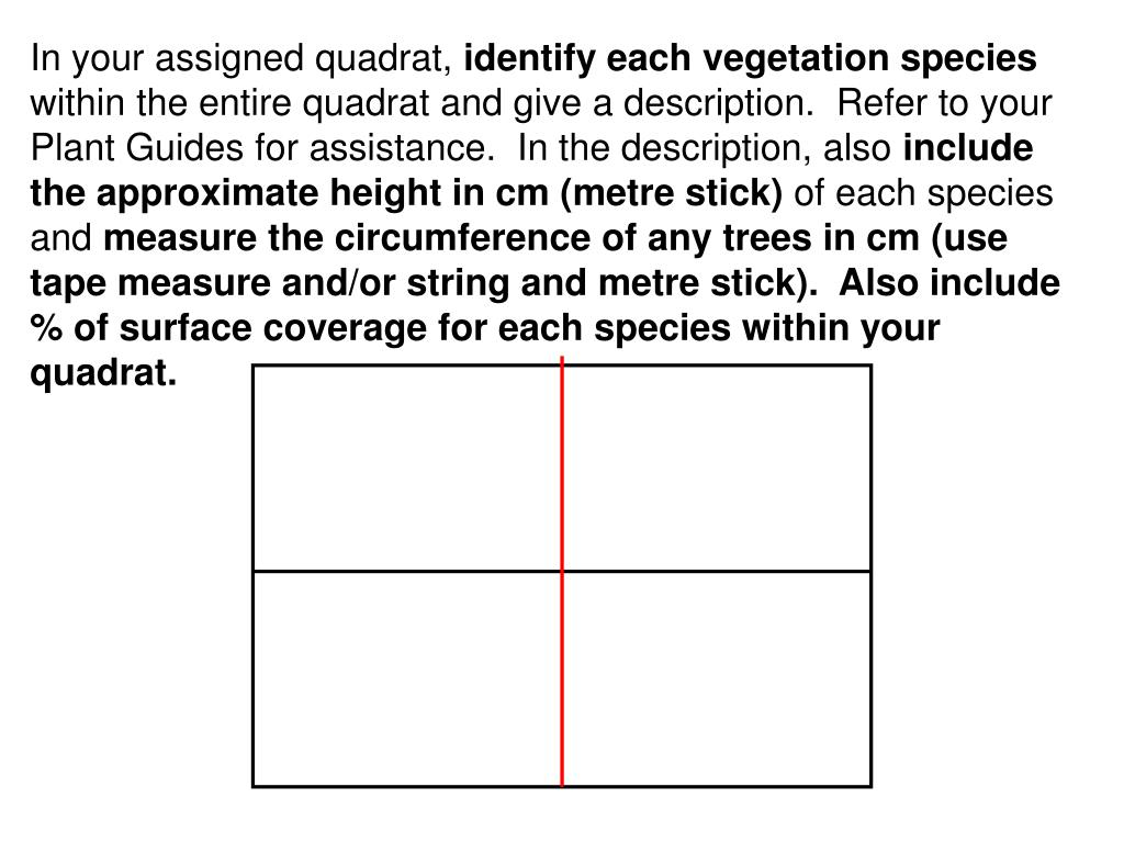 In your assigned quadrat,