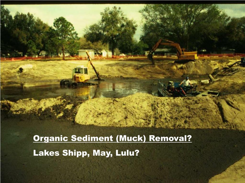 Organic Sediment (Muck) Removal?