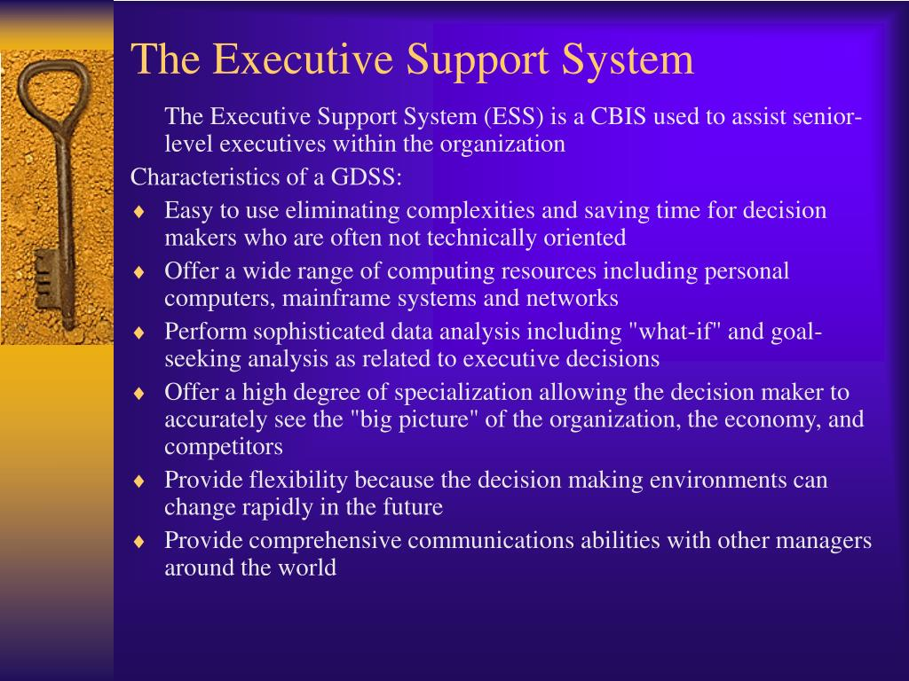 The Executive Support System