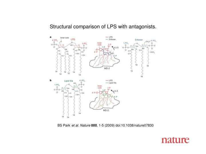 Structural comparison of LPS with antagonists.