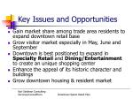 key issues and opportunities