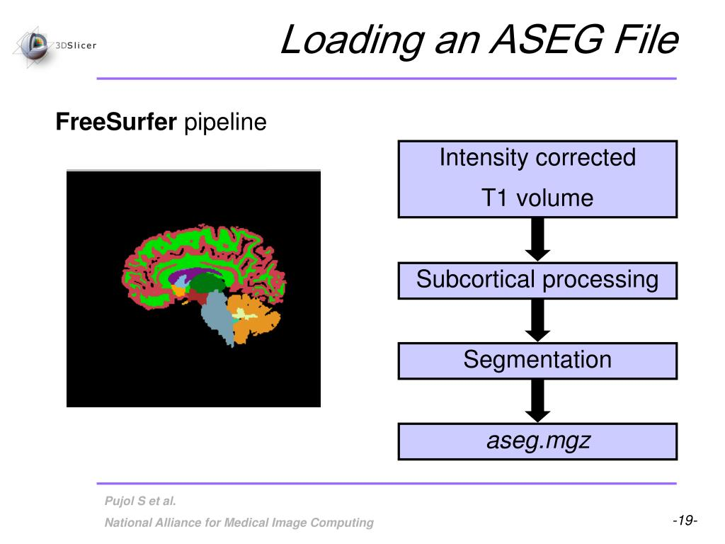 Loading an ASEG File