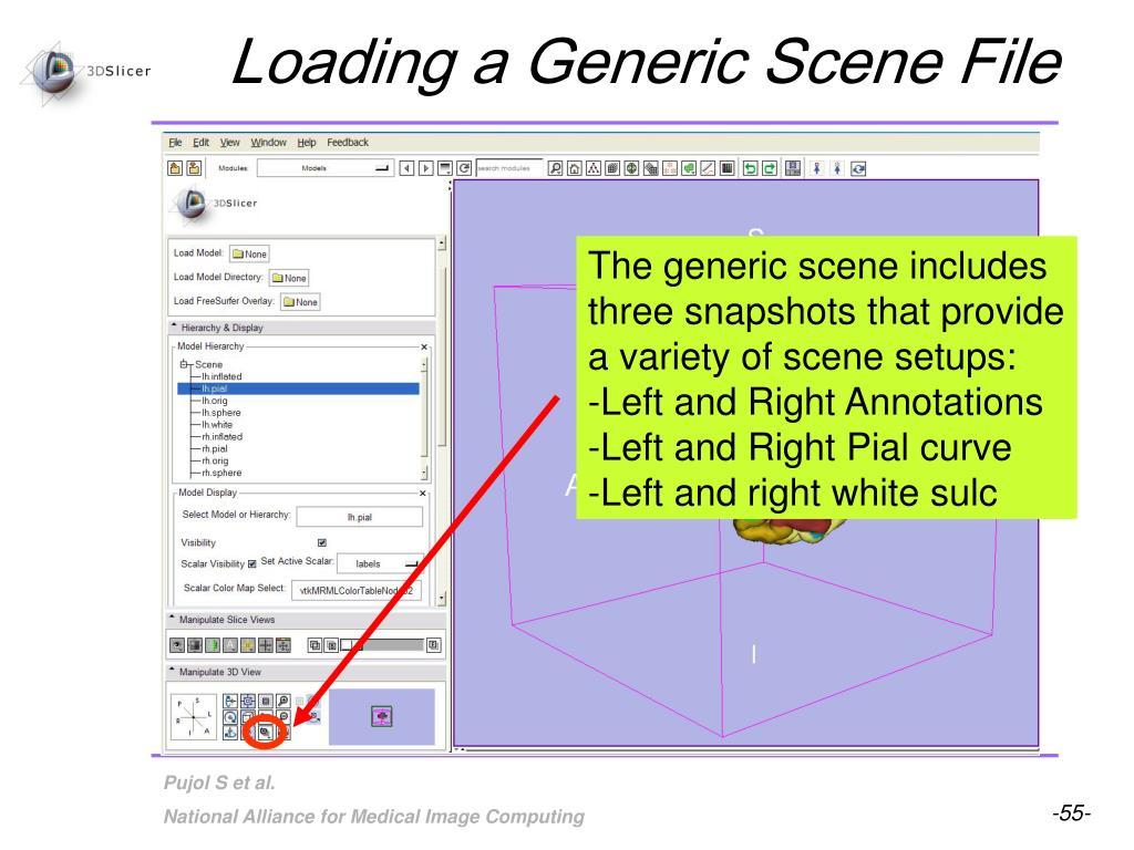 Loading a Generic Scene File