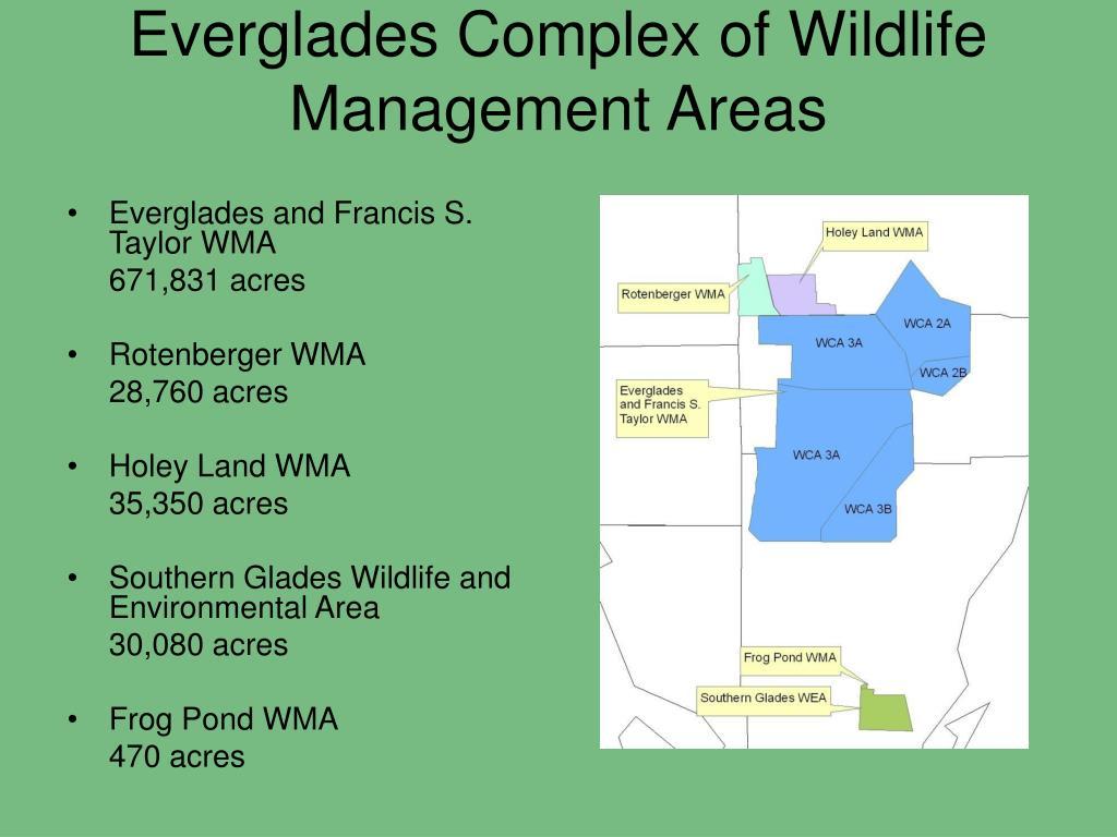 Everglades Complex of Wildlife Management Areas