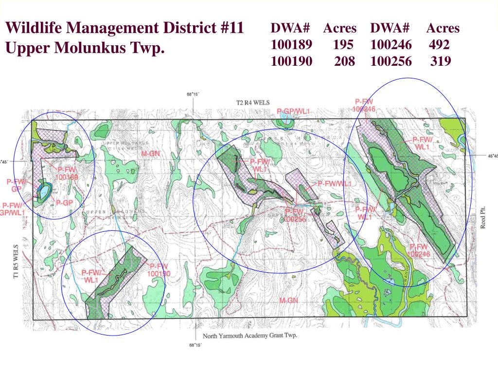 Wildlife Management District #11