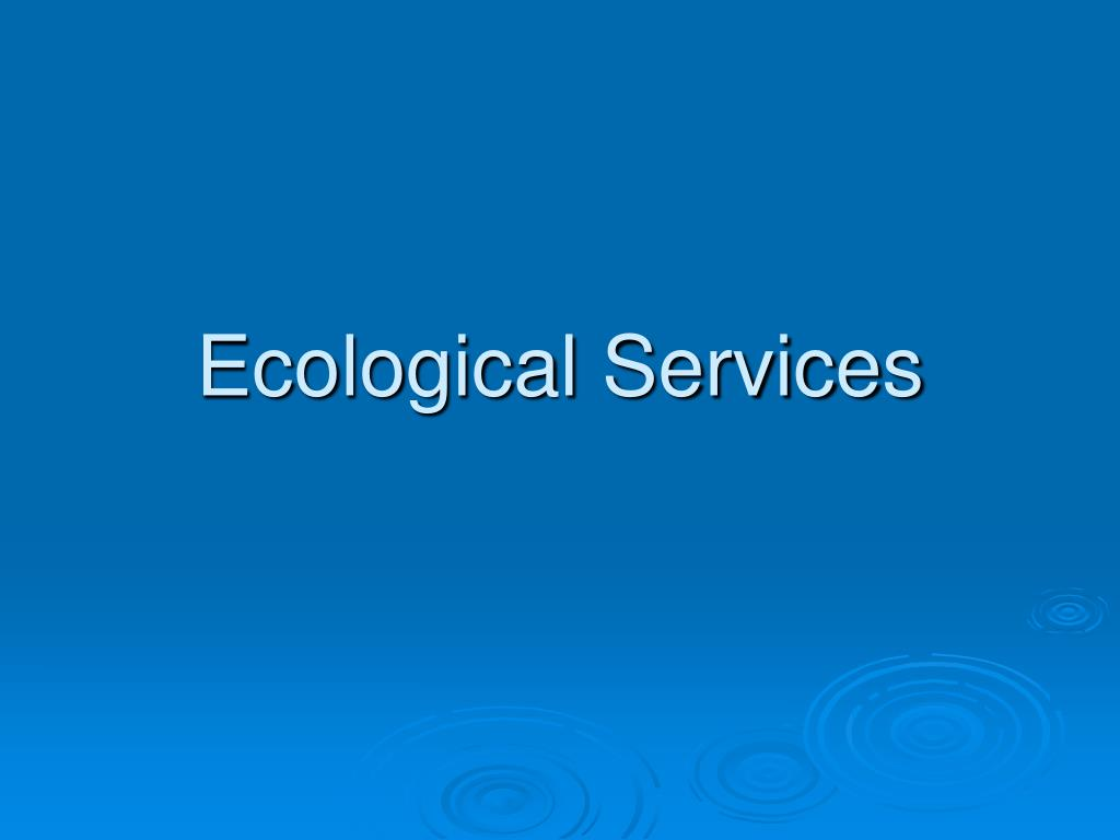 ecological services Comprehensive ecological consulting services designed for effective  conservation planning conservation of biological diversity and ecological integrity.