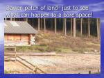 barren patch of land just to see what can happen to a bare space