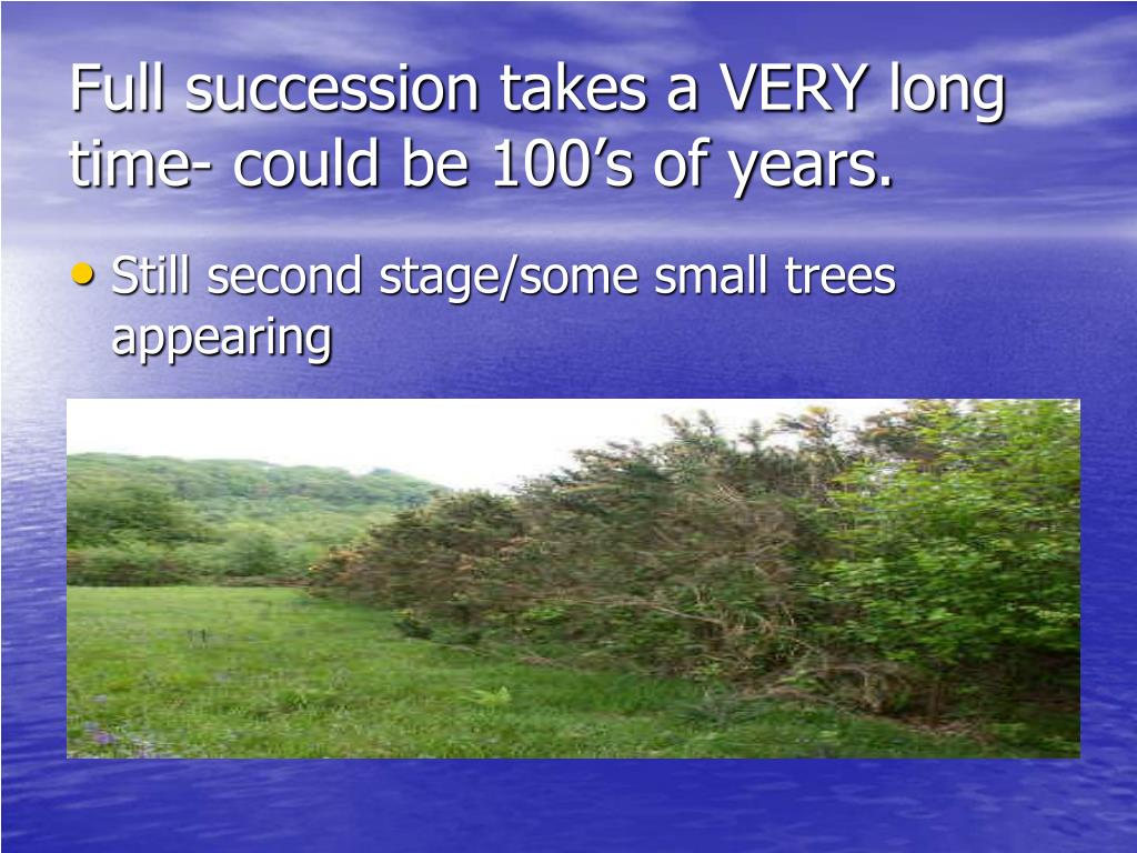 Full succession takes a VERY long time- could be 100's of years.