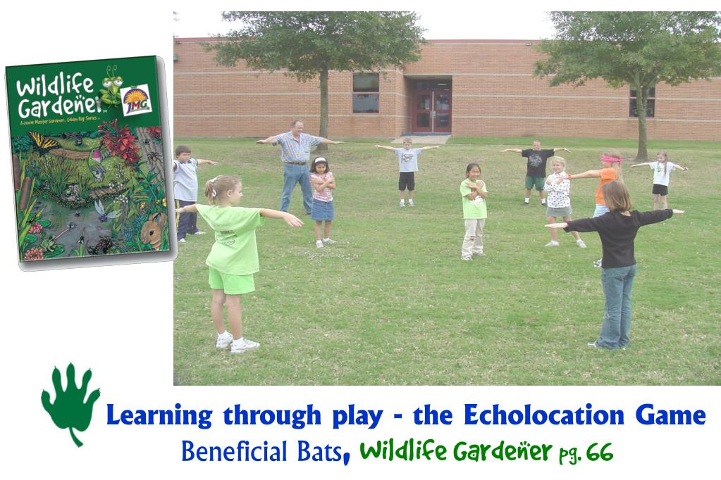 Learning through play - the Echolocation Game