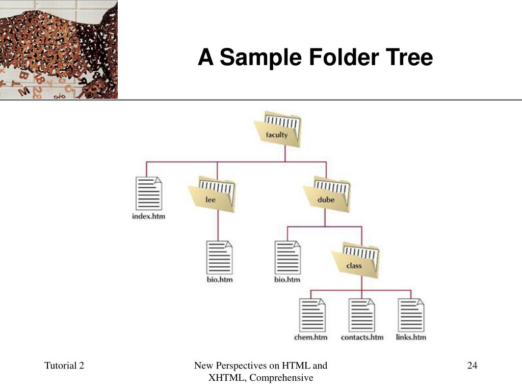 A Sample Folder Tree