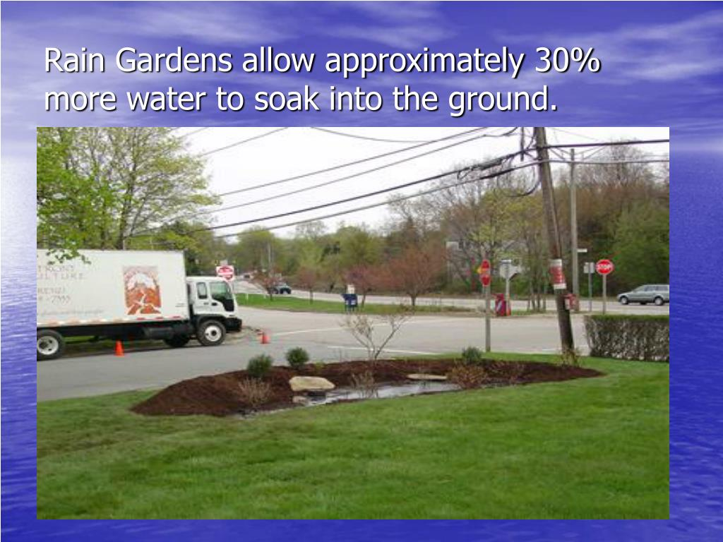 Rain Gardens allow approximately 30% more water to soak into the ground.
