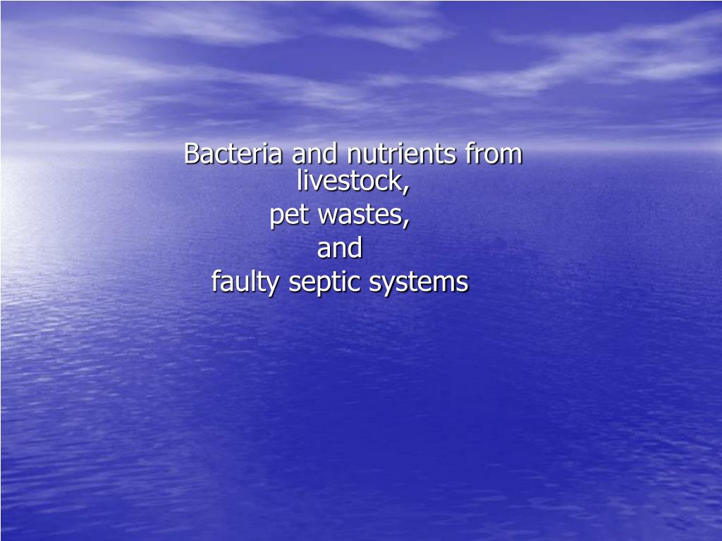 Bacteria and nutrients from livestock,