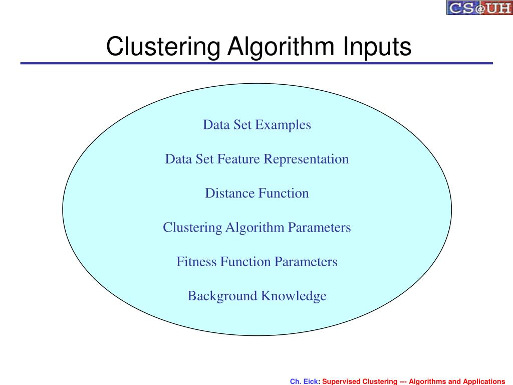 Clustering Algorithm Inputs