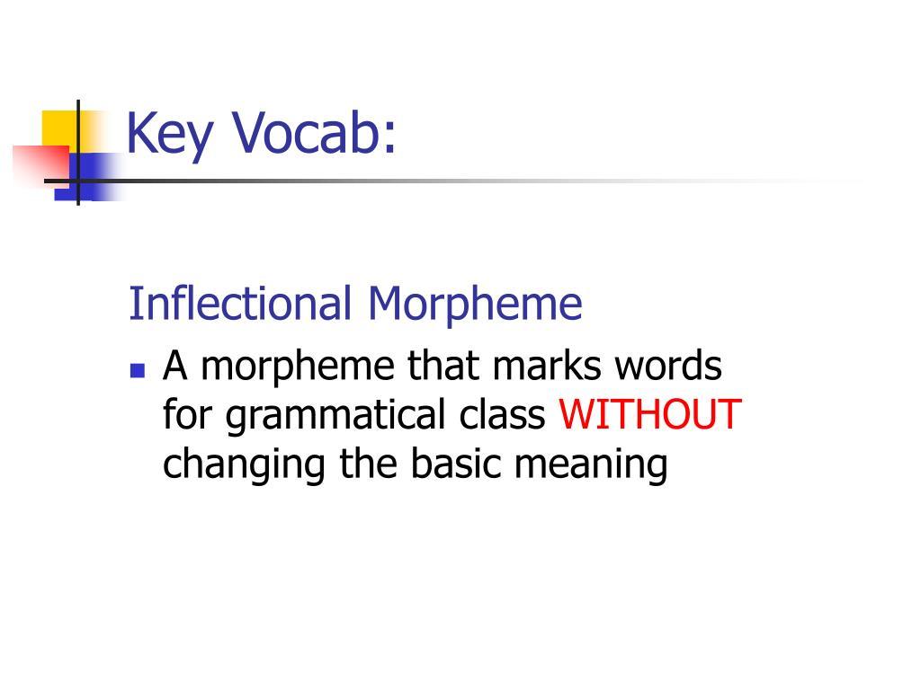 Key Vocab: