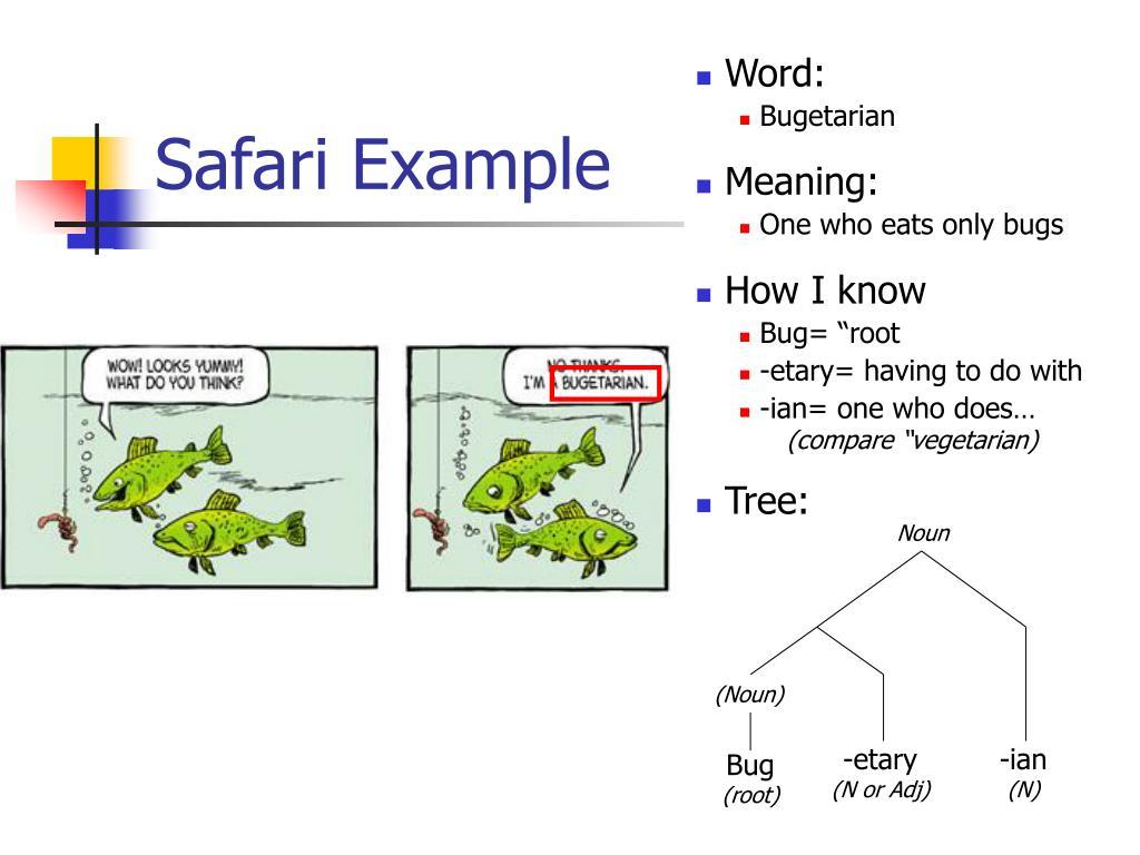 Safari Example