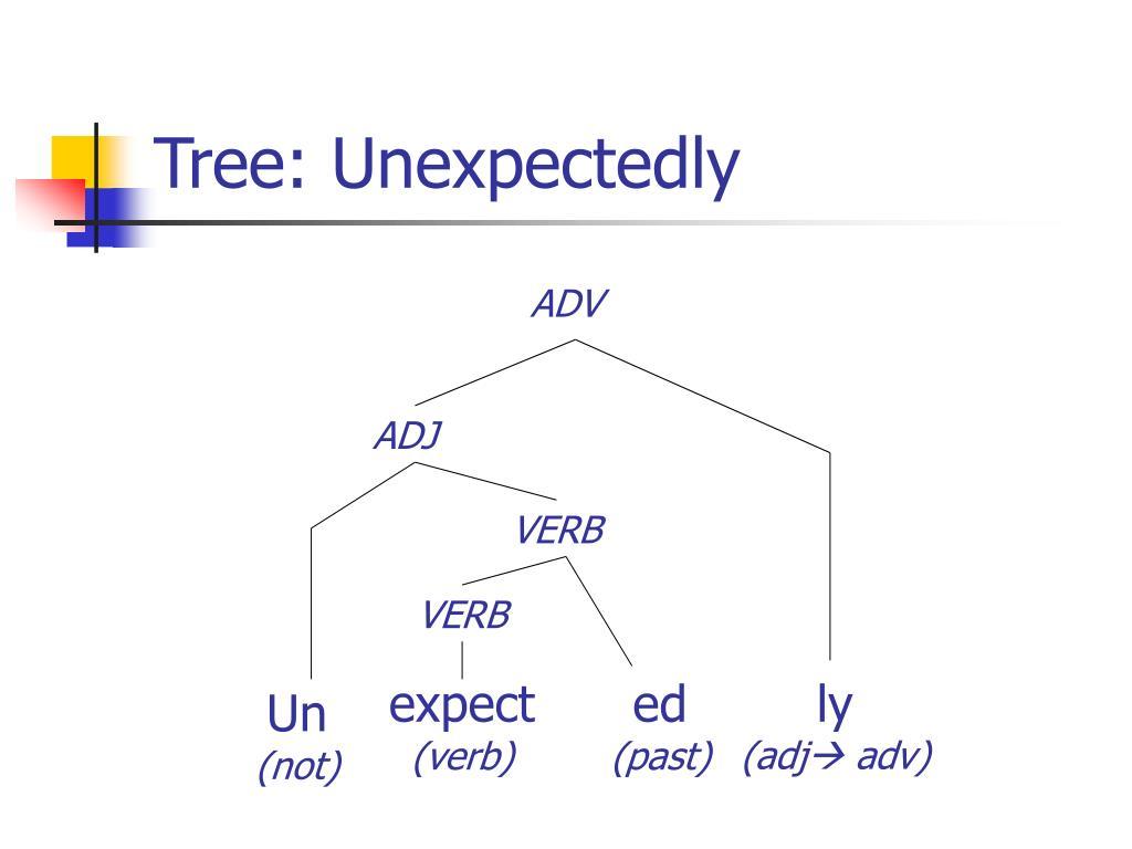 Tree: Unexpectedly
